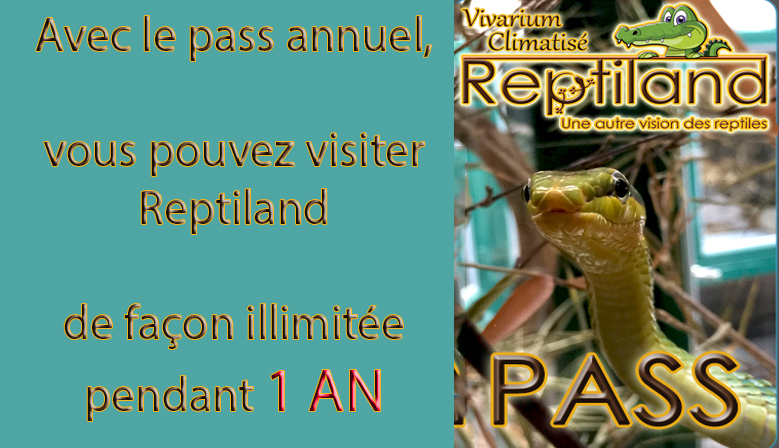 Carte Pass 1 AN